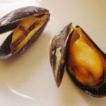 Musslor är en rik källa för Selen ( Se )