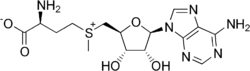SAMe (S-adenosylmetionin)
