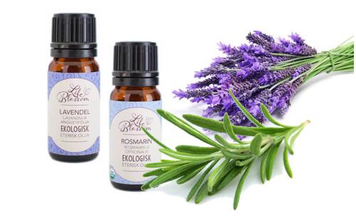 Eteriska oljor - lavendelolja och rosmarinolja vid stress